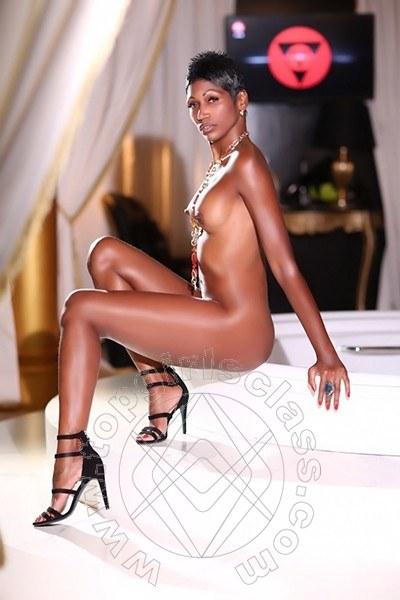 Serena Latina  LEGNANO 3282616337