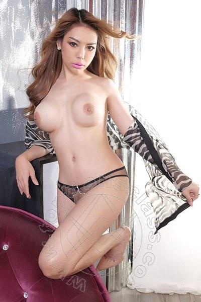Miya Thai  PADOVA 3892084613